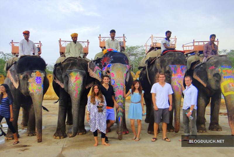 Elephantastic