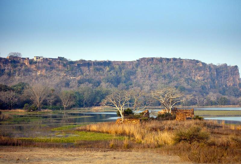 công viên quốc gia Ranthambore